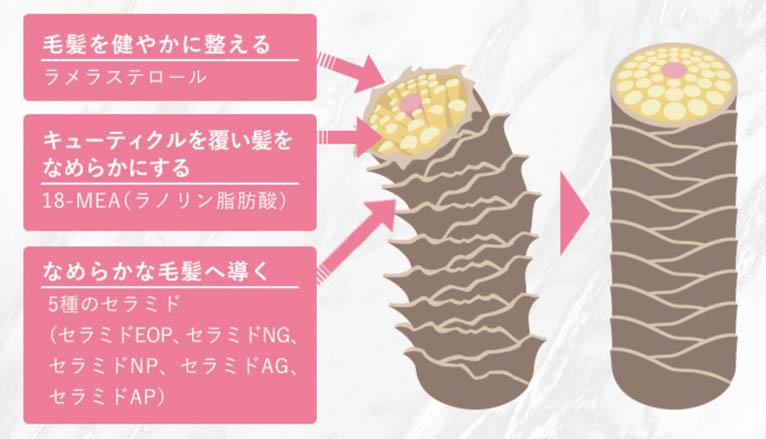 肌ナチュールトリートメント_特長2